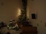 13. - 14. 12. 2013 - vánoční dorost