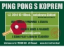 Pingpong 2014
